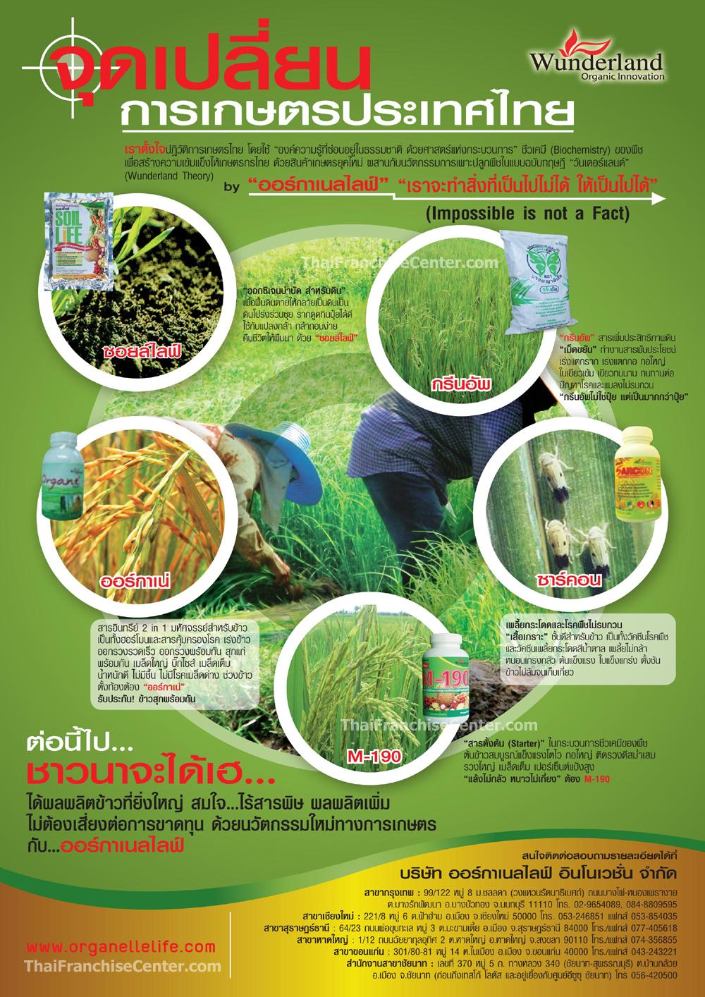 การเกษตรประเทศไทย
