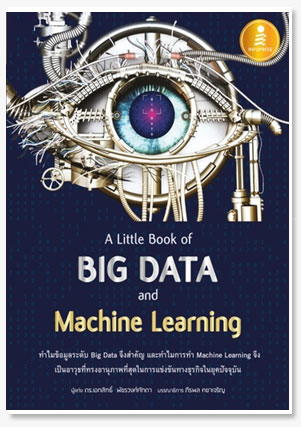 A Little Book of Big Data and Machine ..