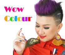 หลักสูตร Wow Colour